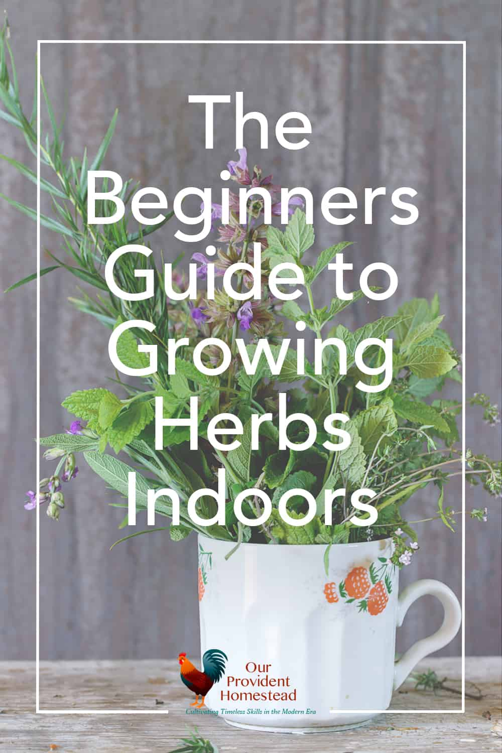 "pinterest pin for ""the beginners guide to growing herbs indoors"""