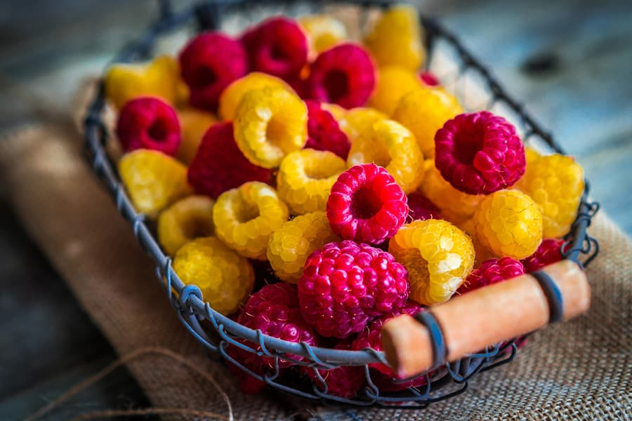 basket of red and yellow raspberries