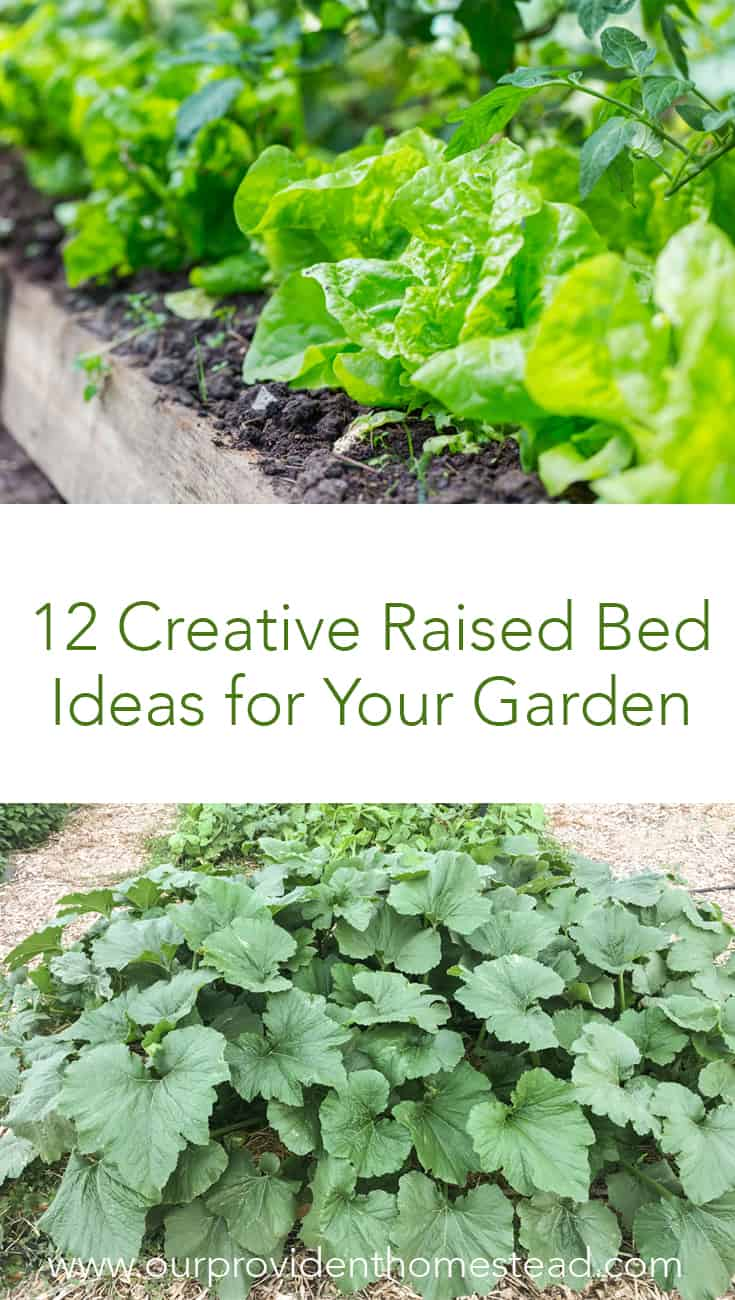 Are you looking for a new design for your garden? Click here to see 12 creative raised bed ideas for your garden that will help you grow more food in less space. #gardening #gardenideas #gardens #raisedbed