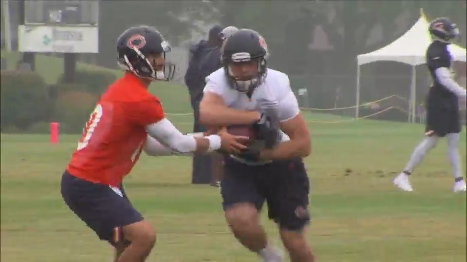 Bears open second training camp practice to the public