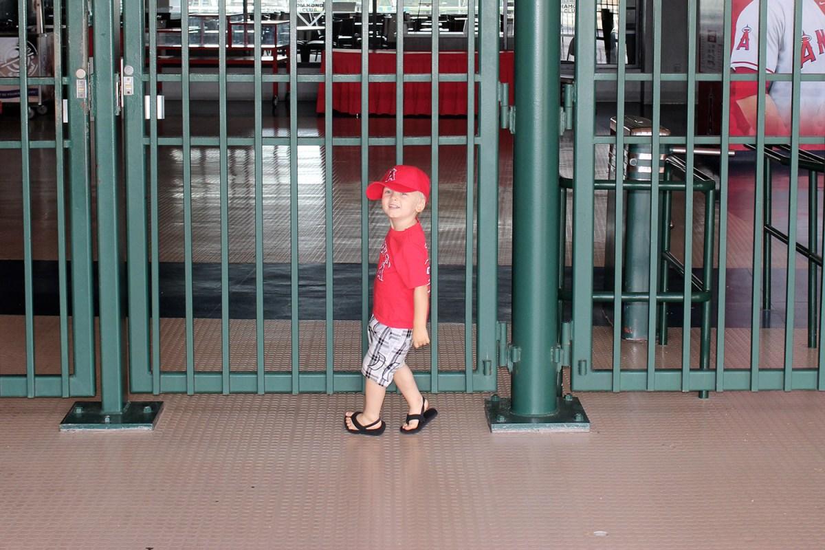 Angels Baseball Stadium Tour