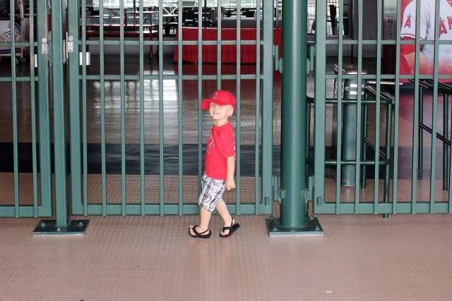 Angels Baseball Stadium Tour