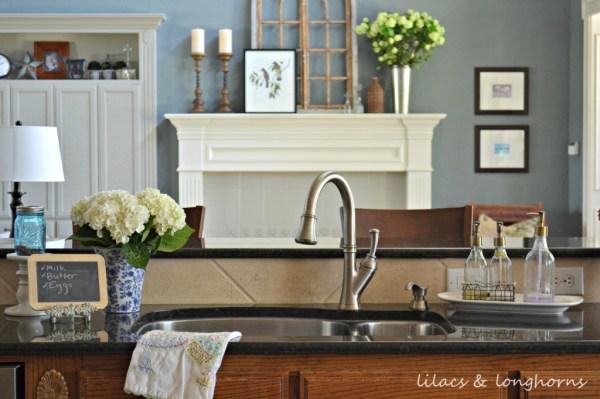 kitchen sink_wm