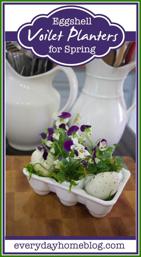 Eggshell-Violet-Planters-The-Everyday-Home-Blog-www.everydayhomeblog.com_