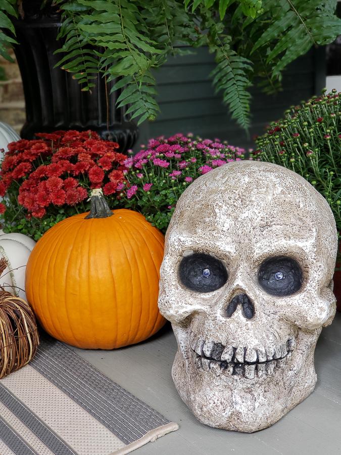skeletom