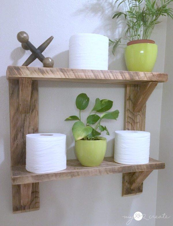 green plants on shelves