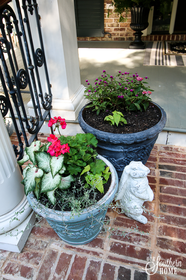 Adding pop of color to the front porch with plants from Monrovia. Great ideas for updating old pots and planting pots. #monrovia #ad