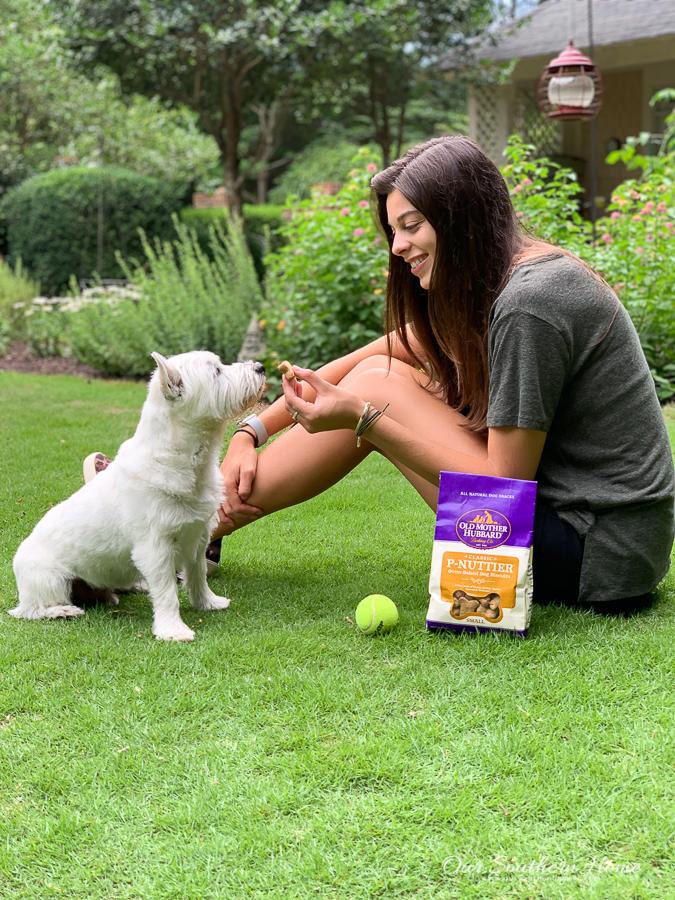 girl feeding a white dog snacks in a yard