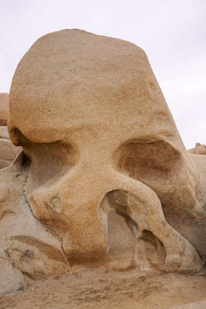 A rock naturally formed to resemble a skull, hence the name Skull Rock which is found at Joshua Tree National Park.