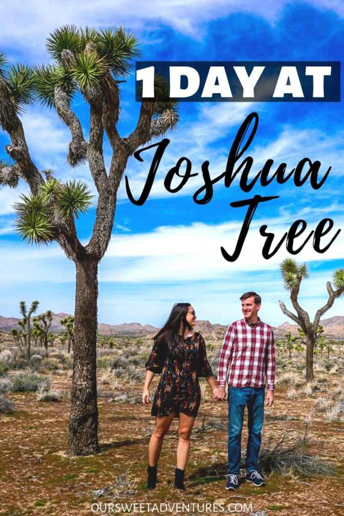 "A couple holding hands and looking at each other with a huge Joshua Tree towering over them with text overlay ""1 Day at Joshua Tree""."