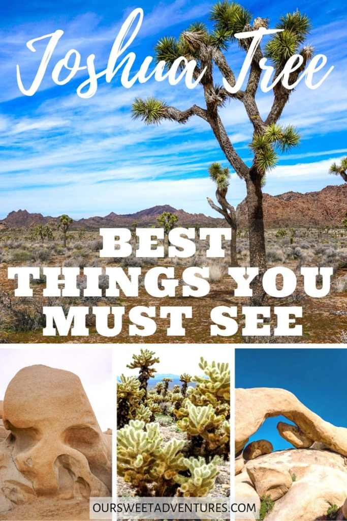"A photo collage of four pictures - Joshua Trees, Skull Rock, Cholla Cactus, and Arch Rock with text overlay ""Joshua Tree Best Things You Must See""."