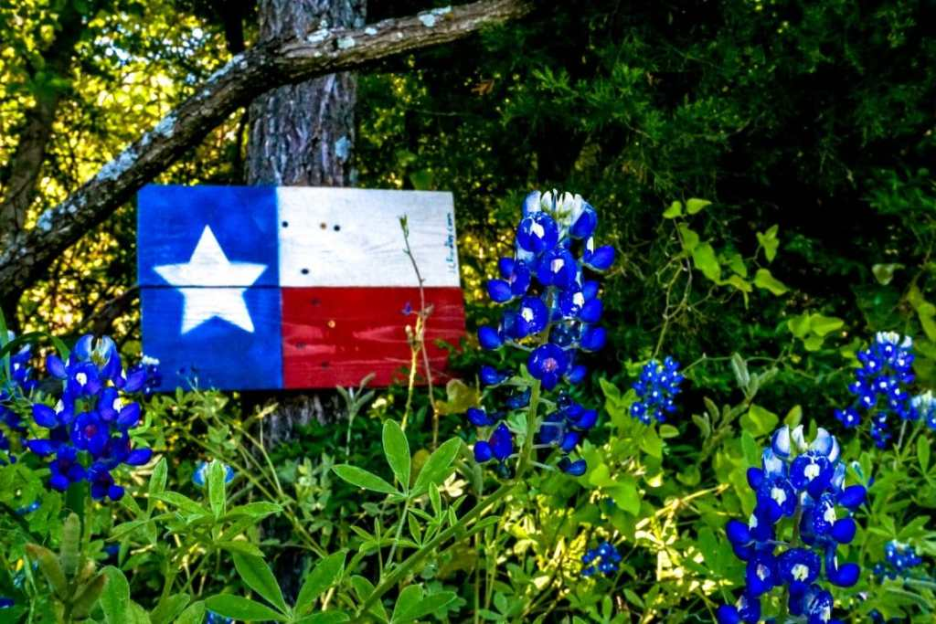A wooden Texas flag with a close up of Ennis bluebonnets.