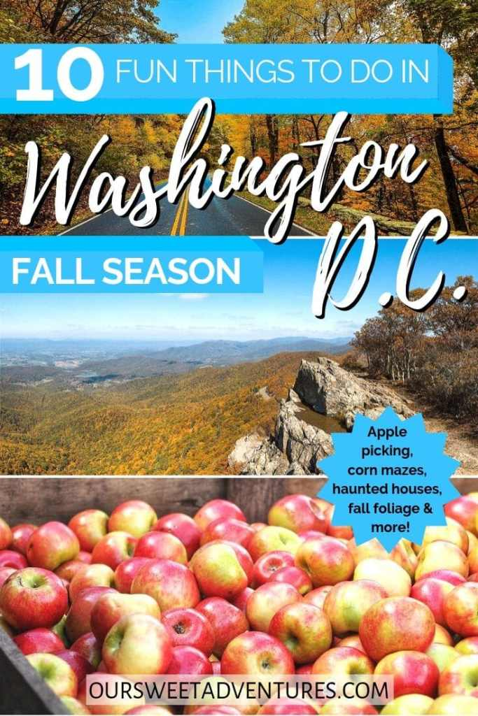"Three photo collage with text overlay ""10 Fun Things to do in Washington D.C. Fall Season"". The top photo is a road bending a corner. The middle photo is a colorful mountain range. The bottom photo is a bushel of golden-red apples."
