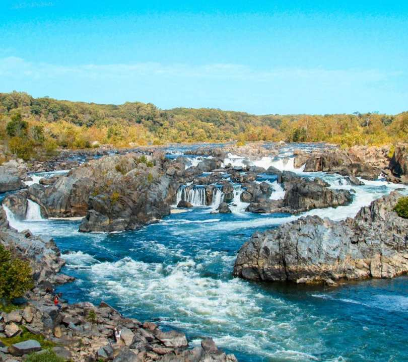 The Great Falls cascading down the Potomac River with colorful trees in the distance from the Virginia side. This is a local favorite for hiking near Washington D.C.