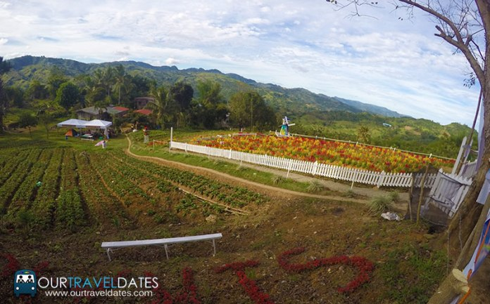 sirao-flower-garden-cebu-philippines-our-travel-dates-image2