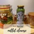 7 Day Millet Detox