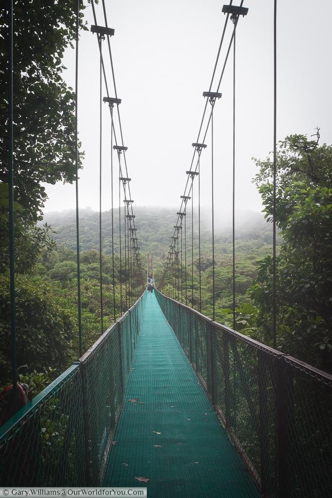 Cable bridges connect different parts of the Cloud Forest Reserve.