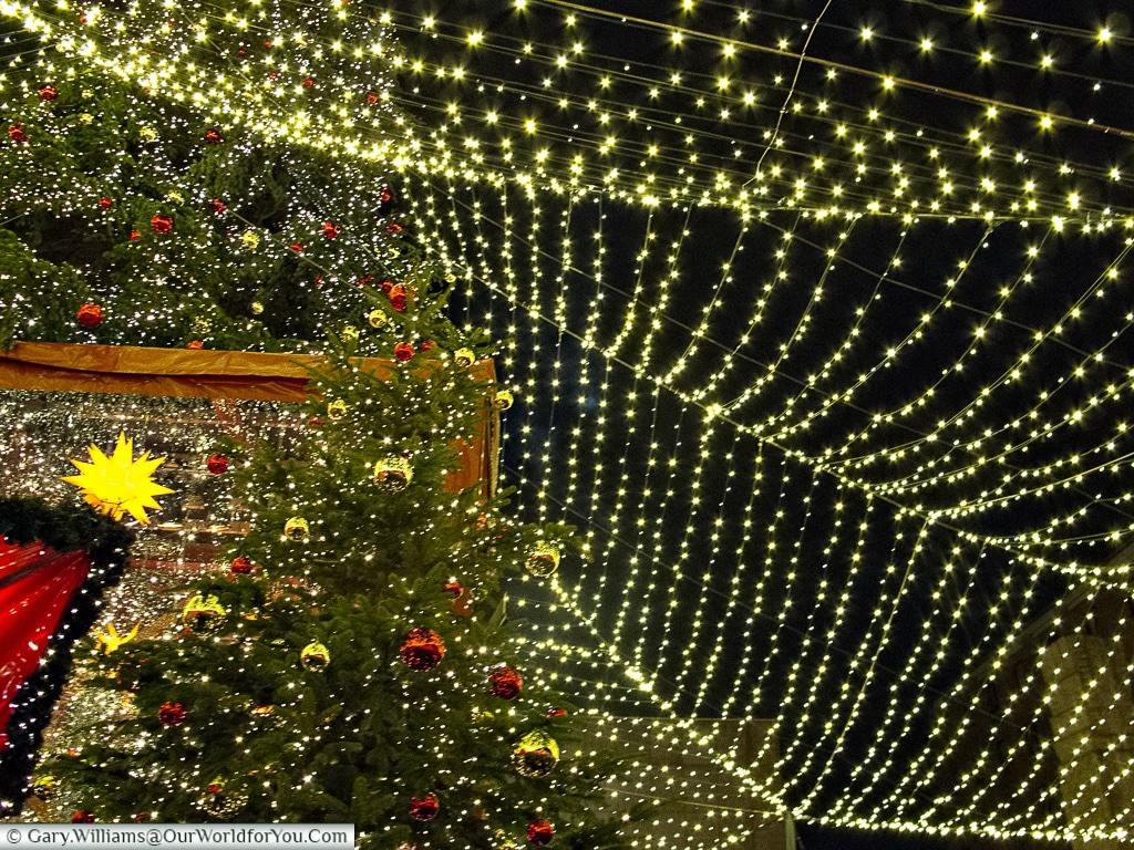 Under a canopy of Chrsitmas lights, Cologne, Germany
