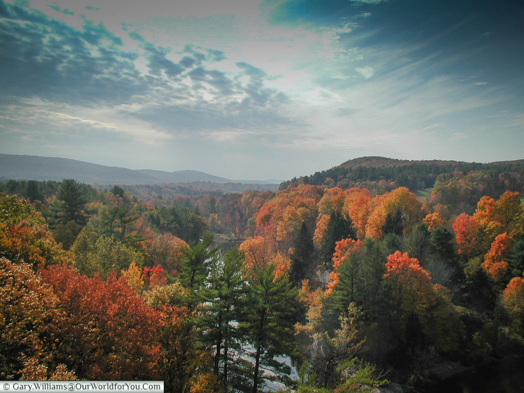 The New England foliage from 2001