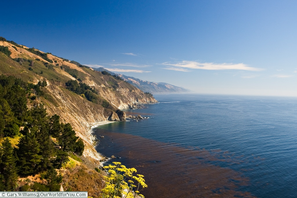 The view along the Highway One, on the West Coast of the U.S.A