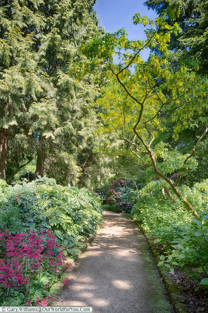 A path through the gardens, Sandringham, Norfolk, England, UK