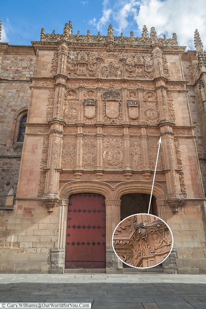 Find the the Frog, Salamanca, Spain