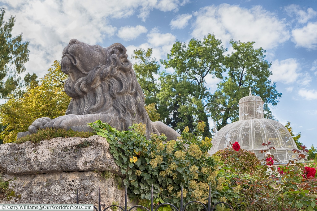 A Lion in the Mirabell Palace Gardens, Salzburg, Austria