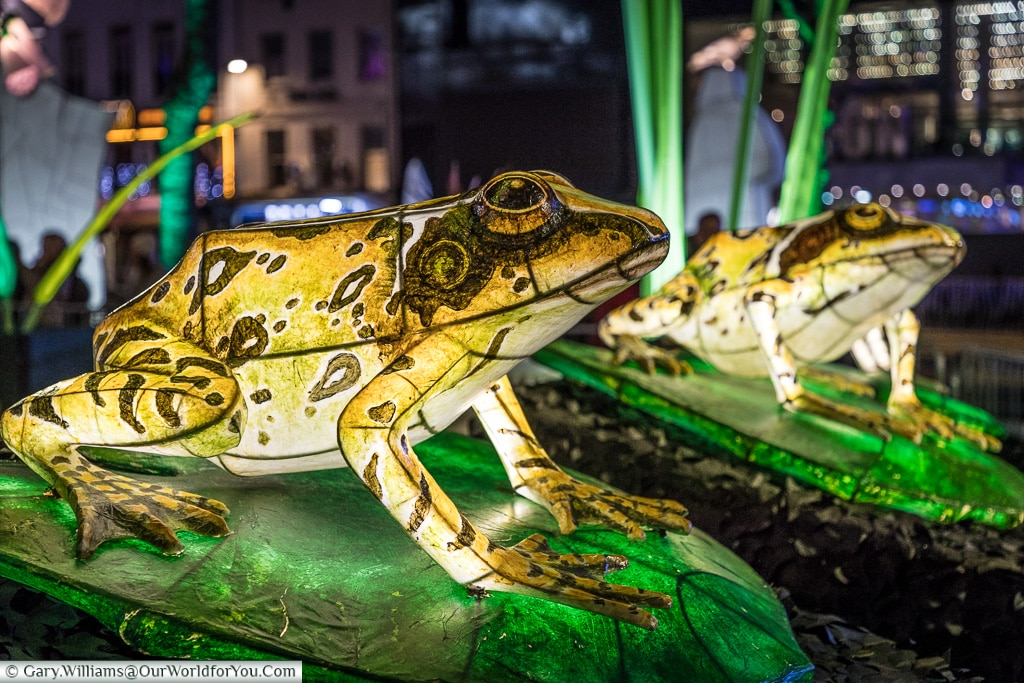 Illuminated frogs, Lumiere London, London, England, UK