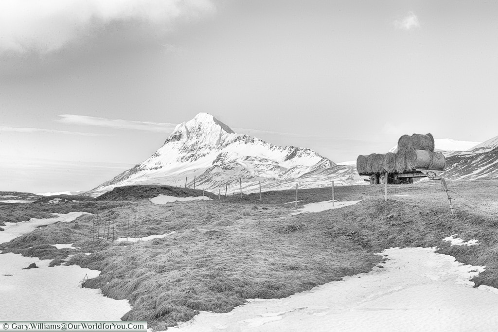 Farming in central Iceland