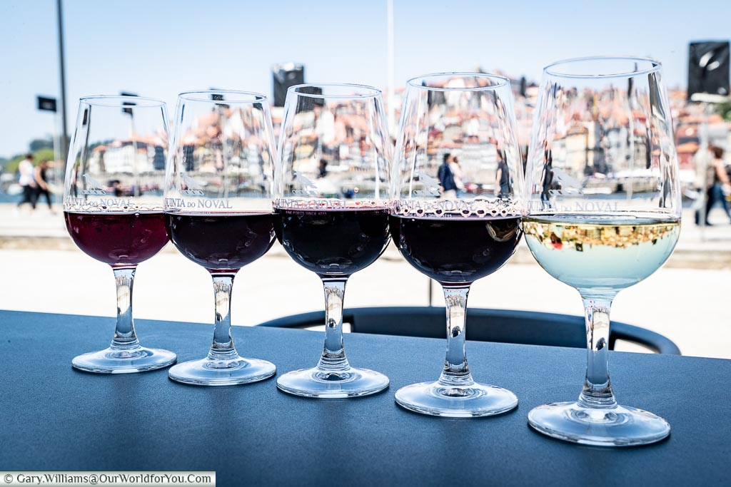 A selections of ports in Porto, Portugal