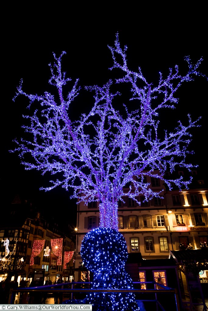 The Blue Tree and the Bear, Strasbourg, France