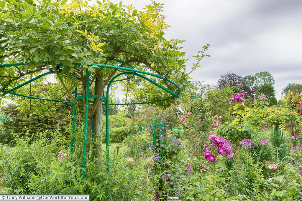 The gardens, Giverny, Normandy, France