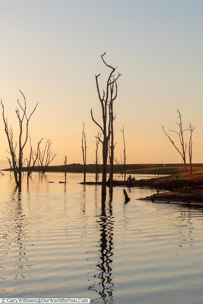 Shimmering light, Sundowner cruise, Rhino Safari Camp, Lake Kariba, Zimbabwe