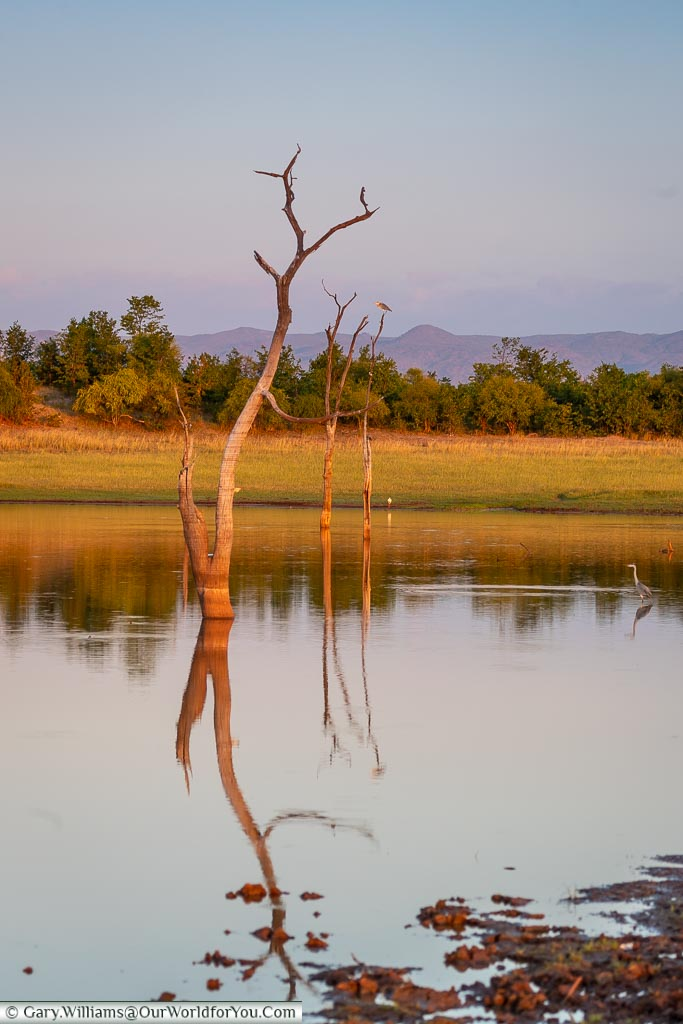 Stillness of the evening, Sundown safari drive, Rhino Safari Camp, Lake Kariba, Zimbabwe