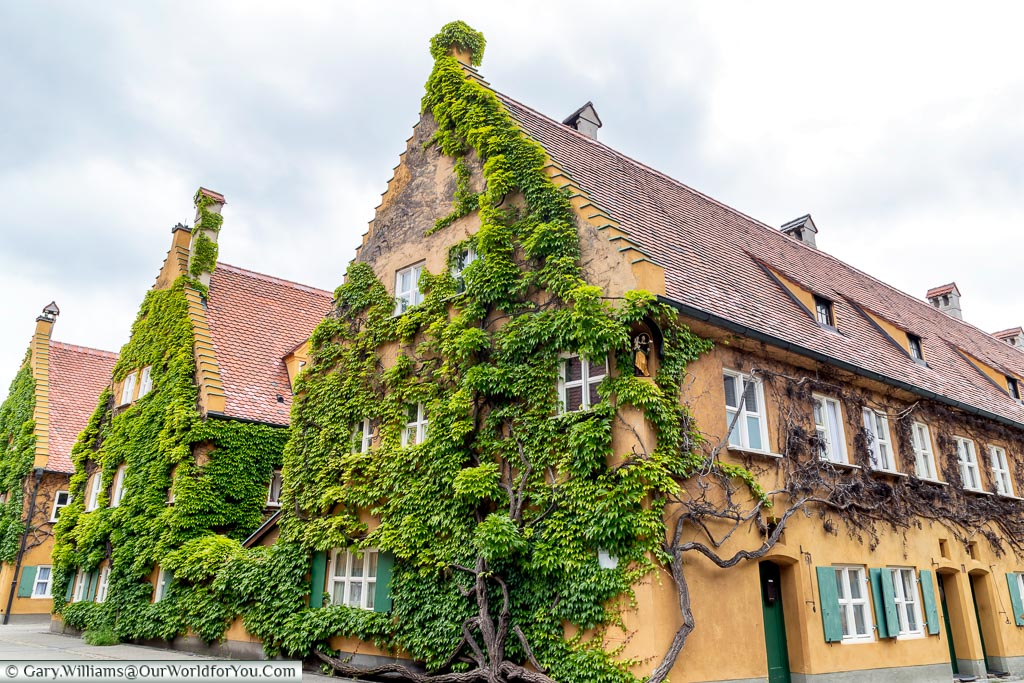 A view of 3 rows of terraced homes in the Fuggerei with vines growing up against the gable end.