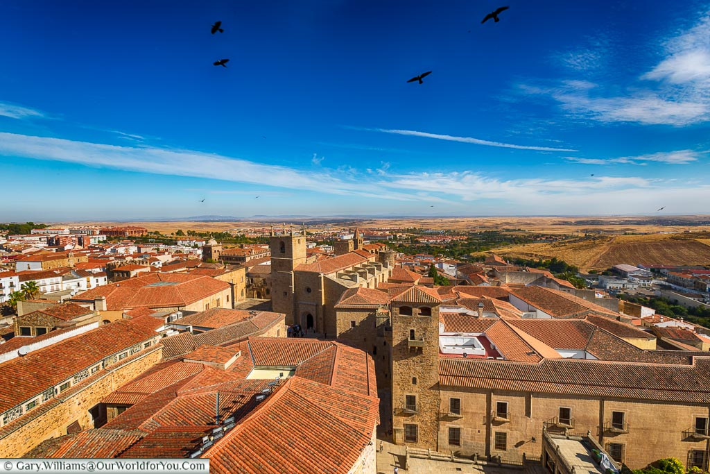 The view over Cáceres roof tops from a church tower.