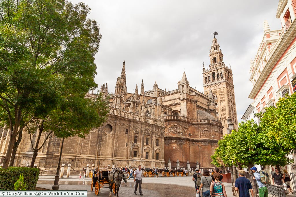 Seville Cathedral from the outside, with a clear view of its tower that was once a minaret of the Mosque.  A line of horse & carriages line the side, awaiting fares from tourists.