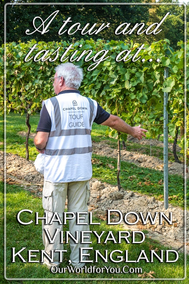 The pin image of our post - 'A tour and tasting at Chapel Down Vineyard in Kent, England'