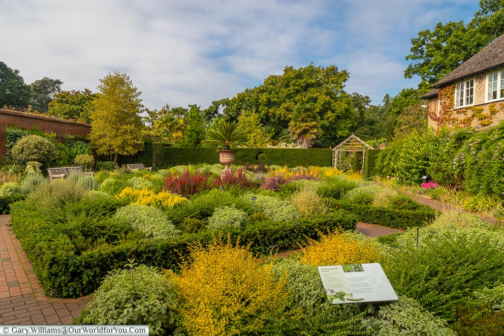 The beds within the walled garden laid out in symmetrical patterns edged with Buxus hedges which are predominately green, yellow & white.