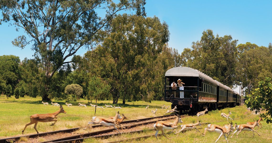 Luxury Train Journey Through South Africa