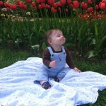 Wordless Wednesday: Boo in the Tulips