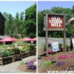 A New Life for The Old Cider Mill in Glastonbury