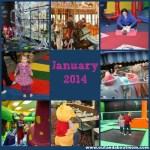 January 2014 Roundup