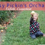 Weekday Fruit Picking at Easy Pickin's Orchard in Enfield