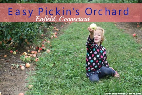 Easy Pickins Orchard_Out and About Mom_Header