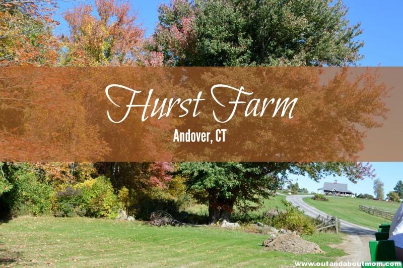 Hurst Farm Feature 3