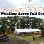 5 Reasons to Fall for Fair Weather Acres Fall Festival