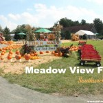 Fall Fun at Meadow View Farm