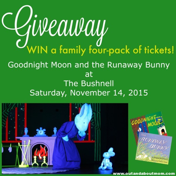 Goodnight Moon at Bushnell_Out and About MOm_Main Image