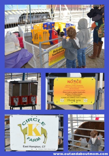 Day Out With Thomas Petting Zoo 2